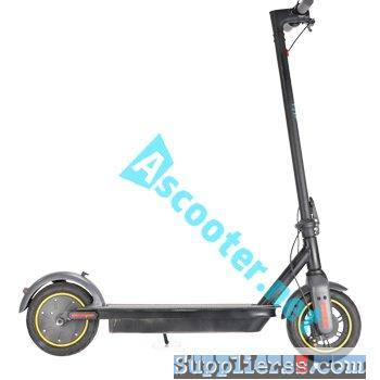 Electric Kick Scooter5